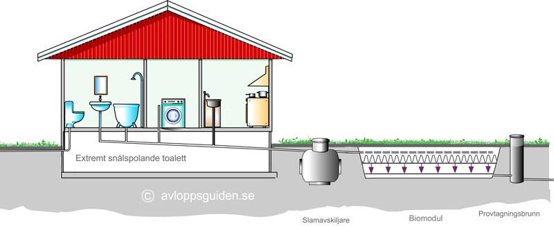 Biomoduler